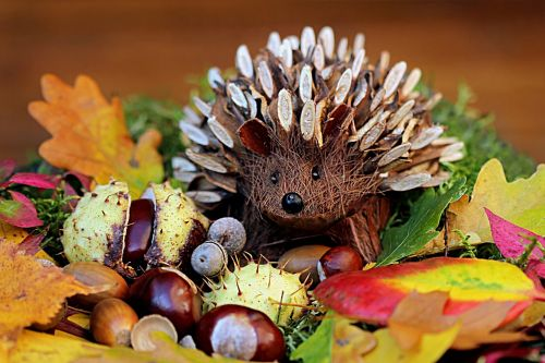 still life hedgehog decoration