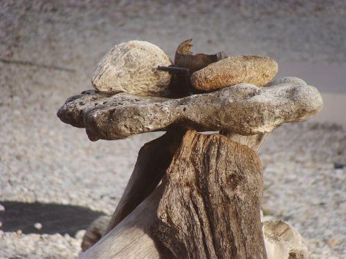 still life bonaire wood
