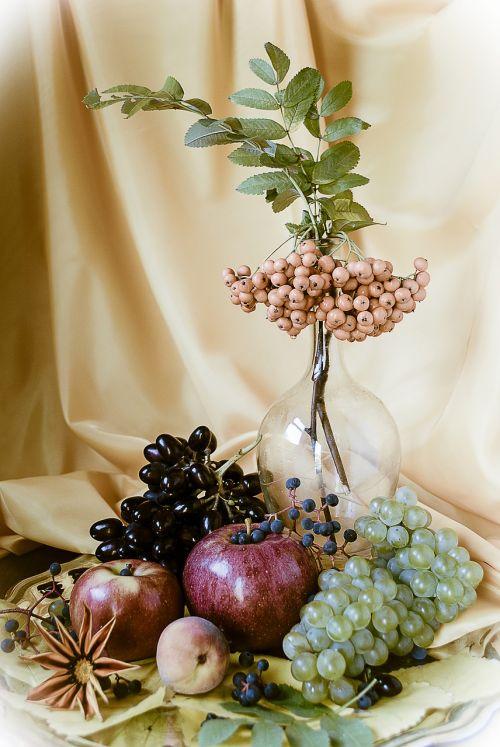 still life grapes apples