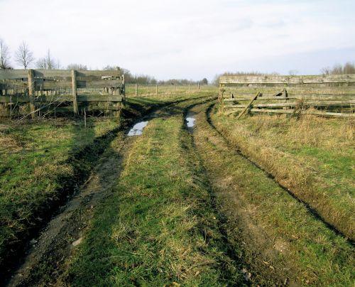 still life meadows polder