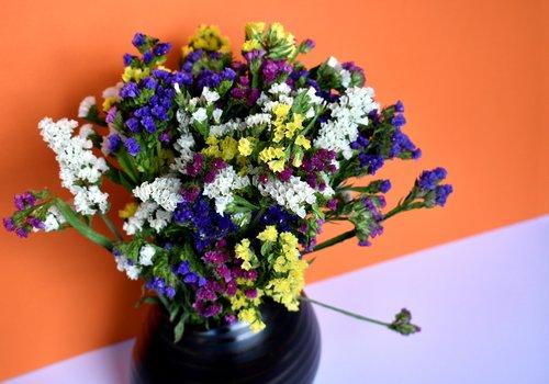 natiurmortas, Natiurmortas, Limonium, gėlės, puokštė, vaza, apdaila, dekoro, Deco