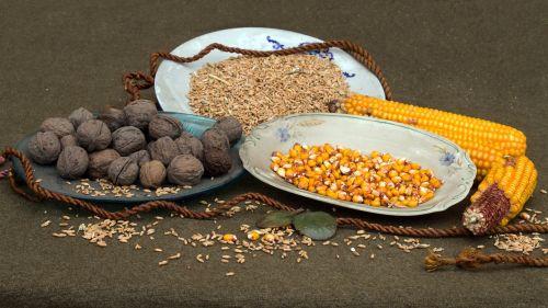 natiurmortas,riešutai,grūdai,kukurūzai,stūmoklis,plokštė