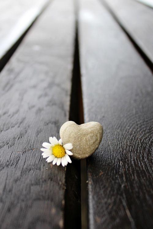 stone stone heart heart