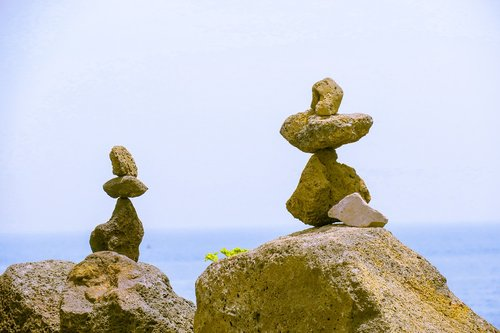 stone  characteristic  sea