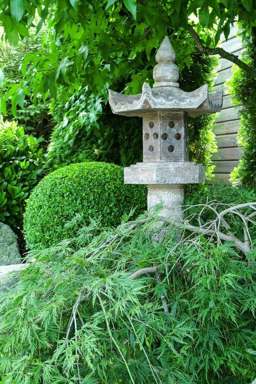 akmeninis žibintas,sodas,klevas,dėžutė