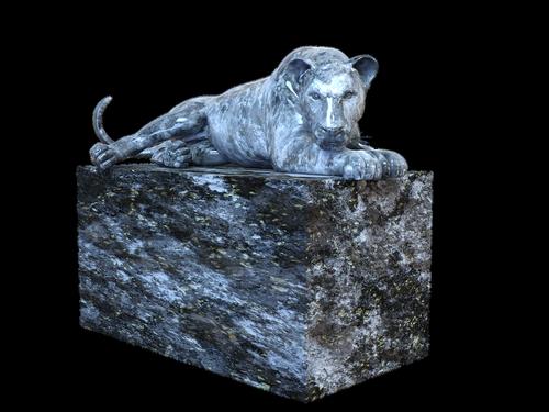 stone lion  lion  stone