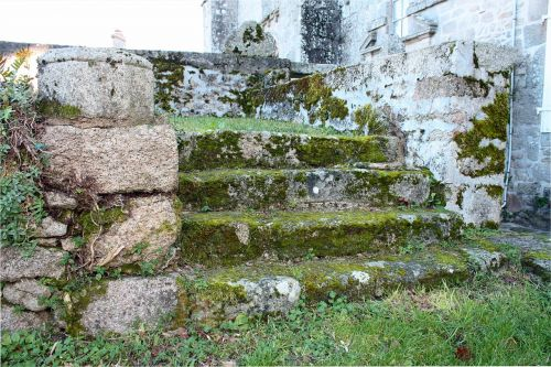 stone steps moss covered steps old stone stairs