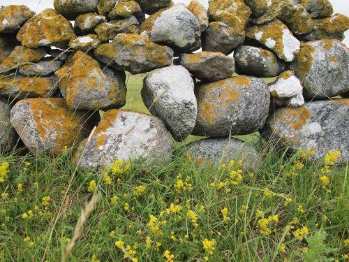 stone wall gotland summer