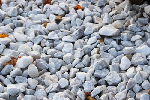 stones silica seashell