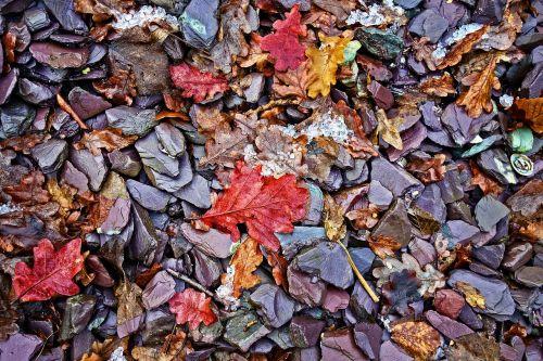 stones pebbles leaves