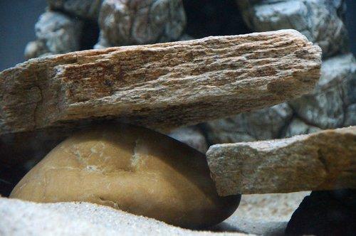 stones  yellow gneiss  aquarium