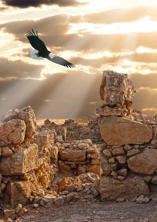 stones  masada  rubble