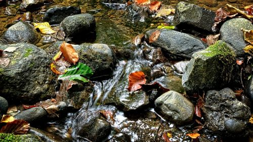stones bach water