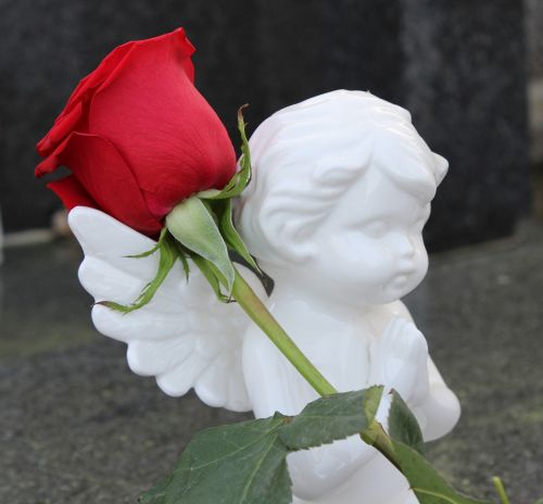 stop child suicide angel red rose
