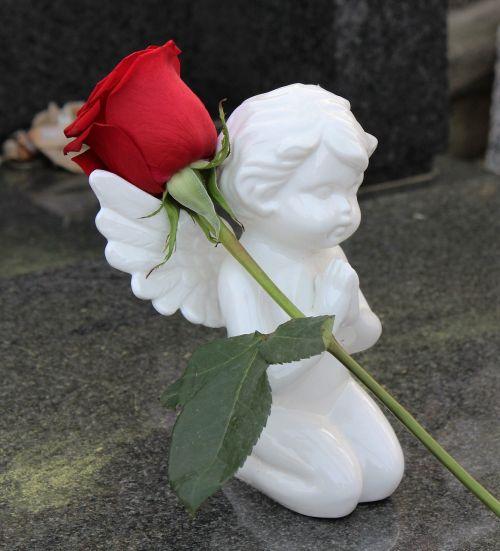 stop children suicide angel red rose