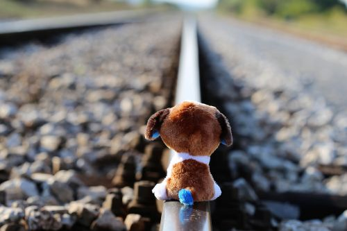 stop children suicide teddy bear waiting lost friend