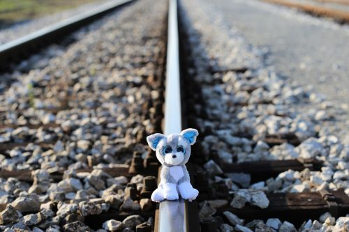 stop children suicide now teddy bear in shock still waiting