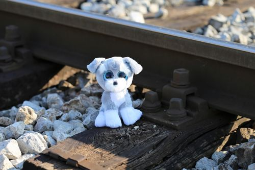 stop children suicide now teddy bear shocked teddy bear still waiting