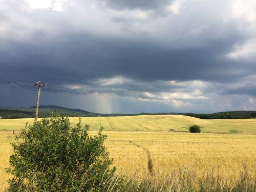 storm crop circle path