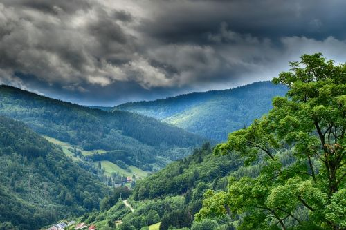 storm forest mountains