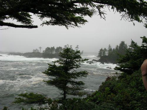 storm waves tofino