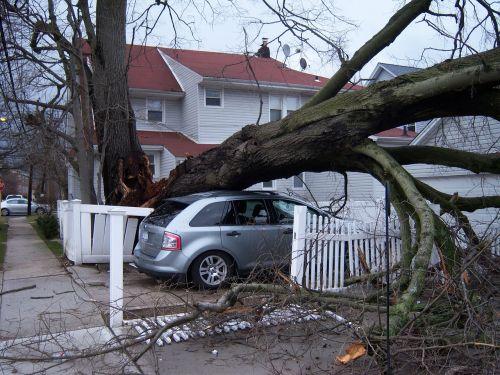 storm damage hurricane