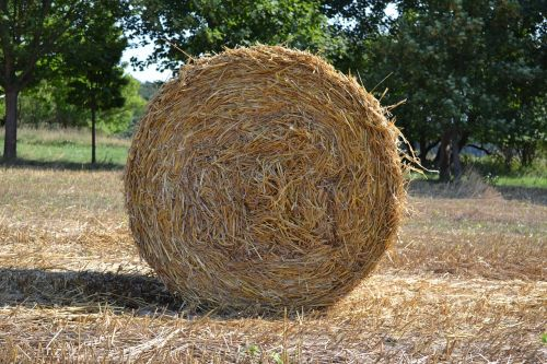 straw straw role agriculture