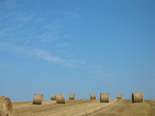 šiaudai,šiaudų ryšulys,vaidmuo,derlius,žemės ūkio,ruda,kraštovaizdis