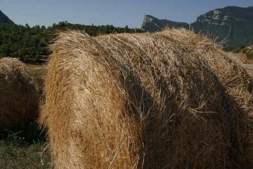 straw forage ball