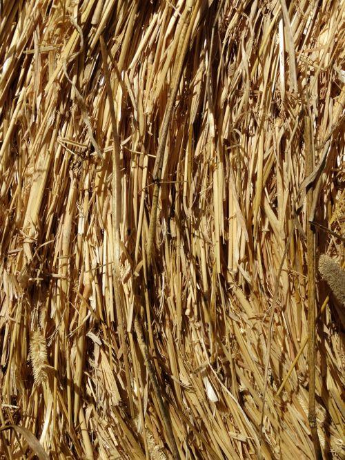 straw straw bales eddy