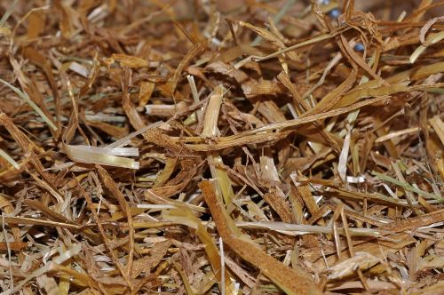 straw litter natural material