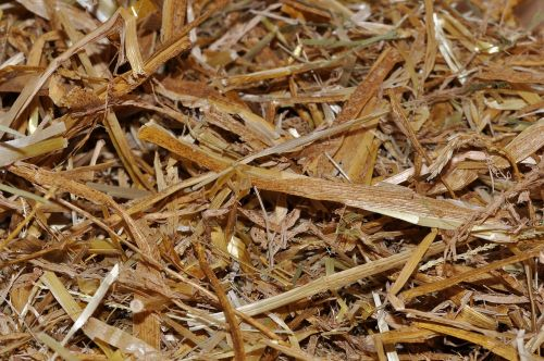 straw animal bedding natural material