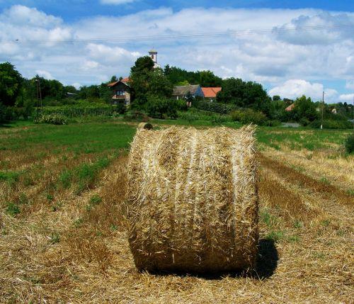 šiaudų ryšulys,Žemdirbystė,kaimo kraštovaizdis