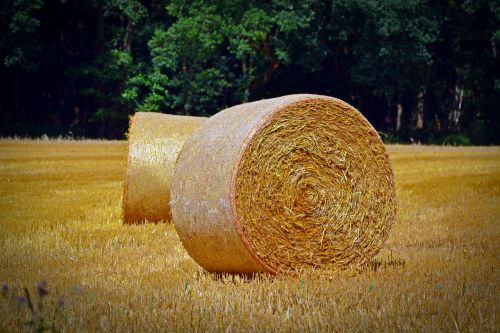 straw bales round bales agriculture