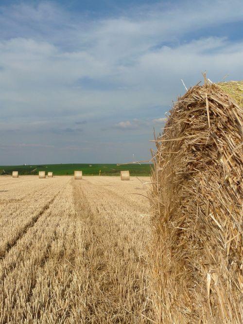 straw bales stubble harvest time