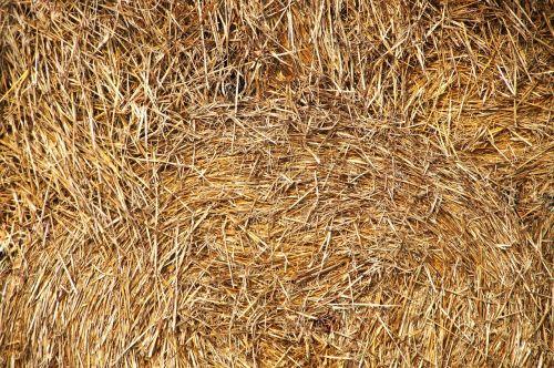 straw bales round bales stacked