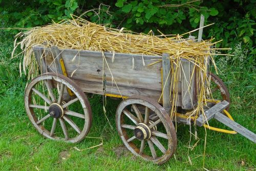 straw carts straw car routes