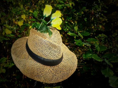 straw hat hat sun hat