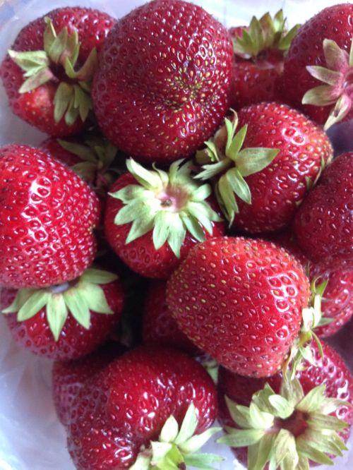 strawberries summer sweet