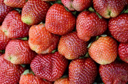 strawberries red dalat