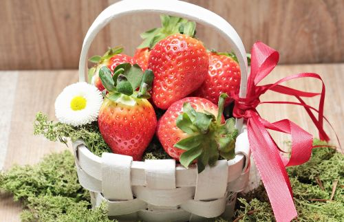 strawberries basket moss
