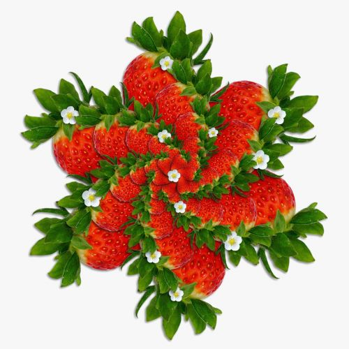 strawberries red geometry
