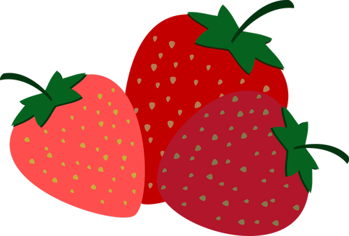 strawberries  fruit  sweet