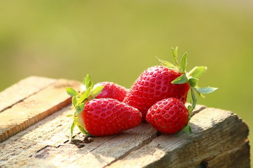 strawberries  fruit  mature