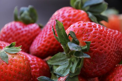 strawberries  bio  healthy