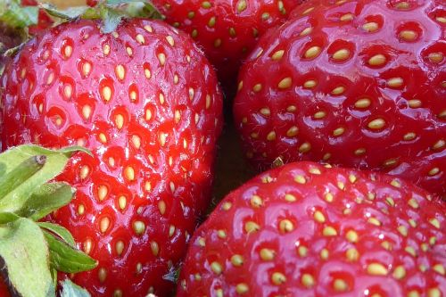 strawberries fruits red