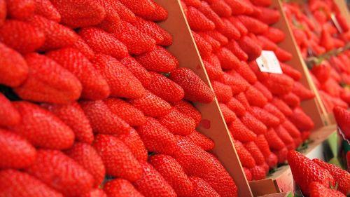 strawberries market open market