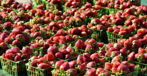 turgus, ūkis, parduotuvė, pardavimas, pirkti, Žemdirbystė, žalias, mityba, sezoninis, oranžinė, salotos, skvošas, sezonas, grupė, bakalėja, žolė, fonas, mityba, sveikata, derlius, maistas, mažmeninė prekyba, žaliavinis, pagaminti, natūralus, parduoti, mažmeninė, ekologiškas, sveikas, augalas, krepšelis, parduodamos braškės