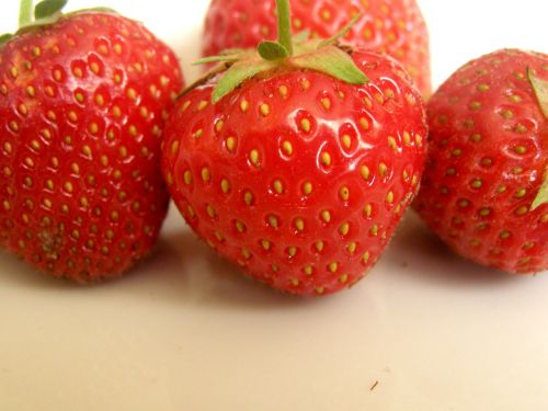 strawberry strawberries red
