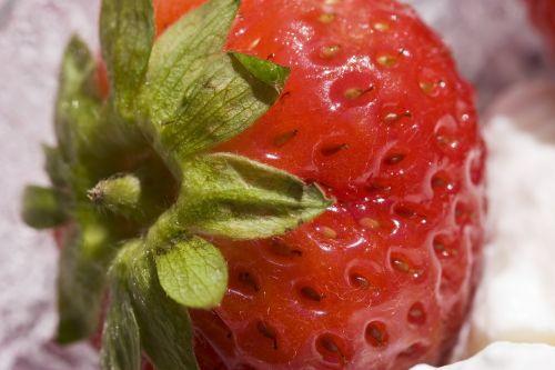 strawberry whipped cream cream